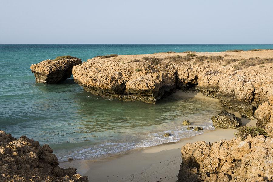 Island Shores Gulf Shores Al Condo For Sale